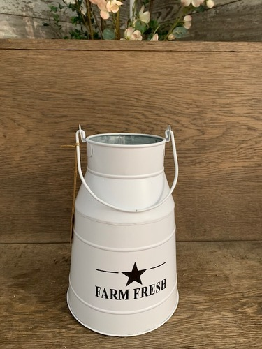 Farm Fresh Cream Bucket from Ginger's Flowers &Gifts, local Martinsburg florist
