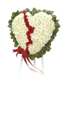 Broken Heart  from Ginger's Flowers &Gifts, local Martinsburg florist