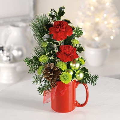 Santa's Cocoa Mug from Ginger's Flowers &Gifts, local Martinsburg florist